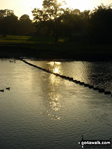 The famous stepping stones over the River Wharfe at Bolton Abbey, Wharfedale