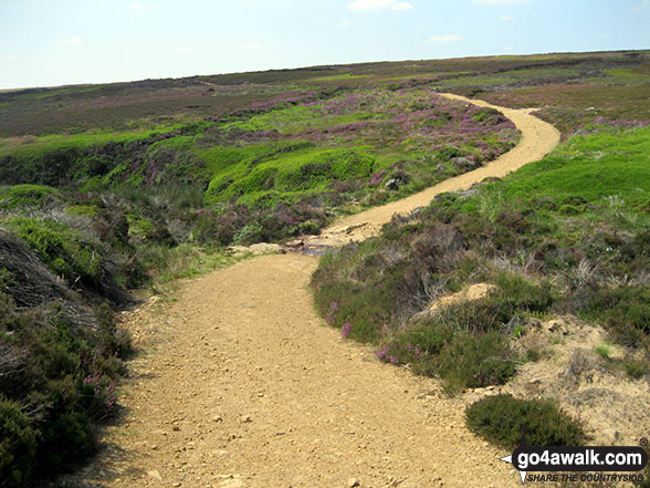 The path across Loskey Ridge