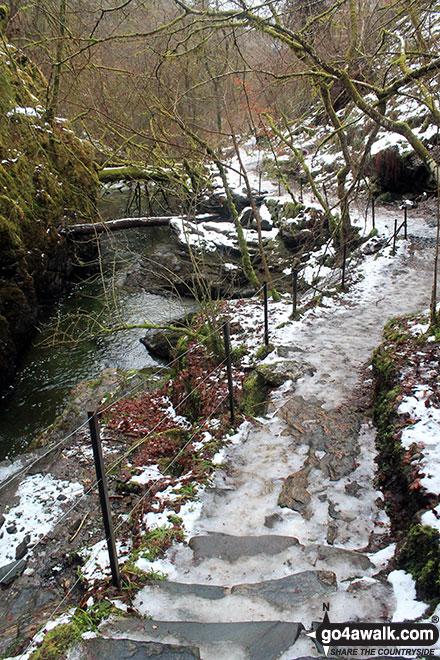 The walkway in the Birks of Aberfeldy