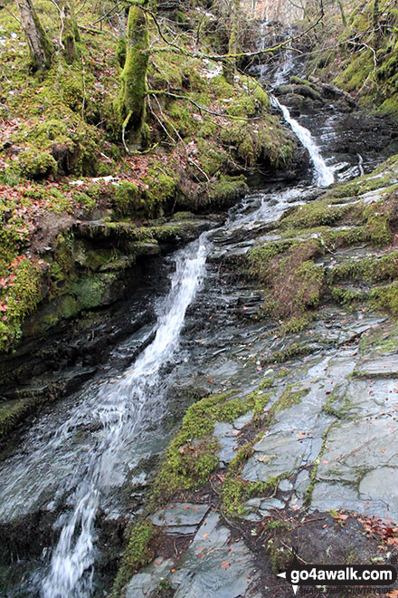 Another of the many pretty waterfalls in the Birks of Aberfeldy