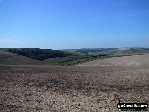 The Sussex Downs near Ditchling Beacon