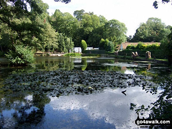 Leigh Place Pond near Godstone. Walk route map su168 Tandridge from Godstone photo