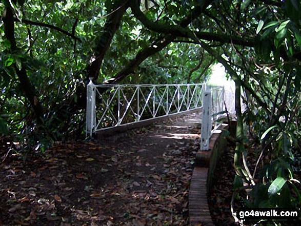 Bridge at Glebe Water near Godstone. Walk route map su168 Tandridge from Godstone photo