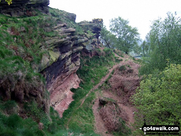 The Sandstone Trail on Helsby Hill