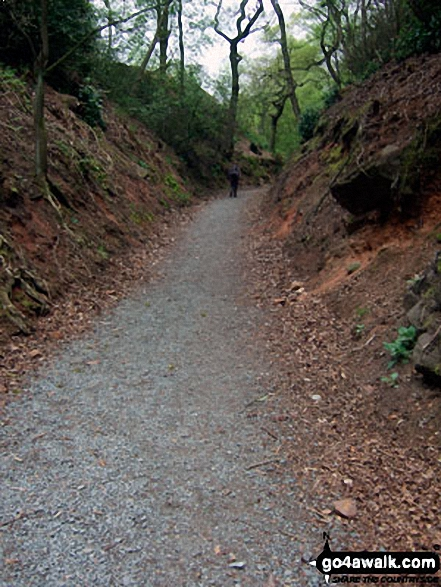 The Sandstone Trail in Snidley Moor Wood