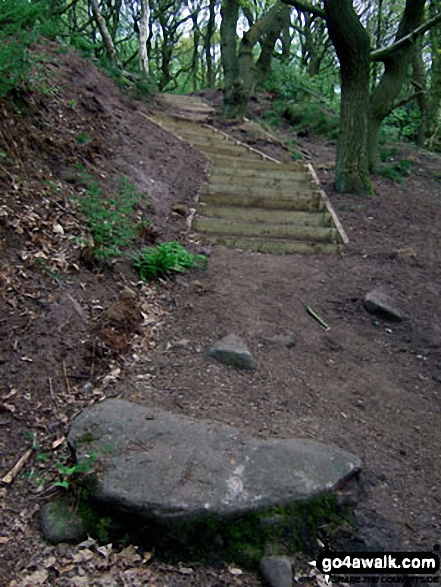 The Sandstone Trail on Woodhouse Hill