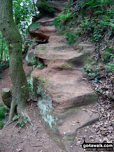 Sandstone 'Steps' in Dunsdale Wood near Frodsham