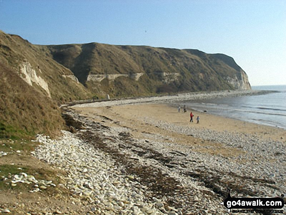 South Landing Beach, Flamborough Head