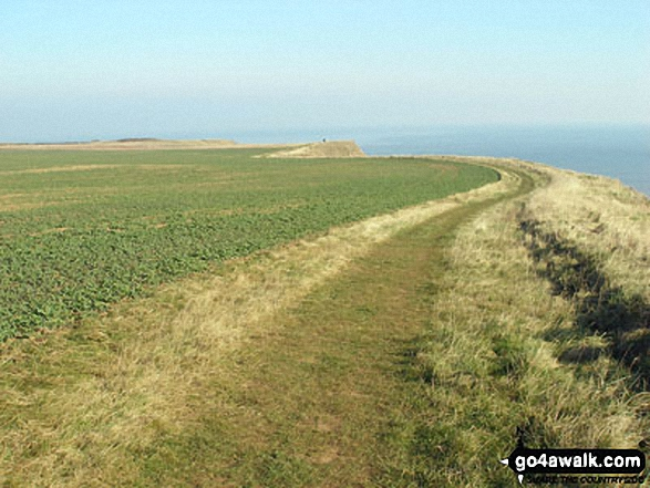 Walk ey100 Flamborough Head from South Landing - The cliff top path north of South Landing, Flamborough Head