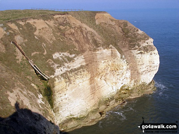 The Cliffs Flamborough Head