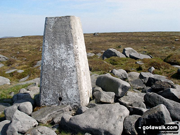 Mallowdale Fell (Ward's Stone) western summit trig point