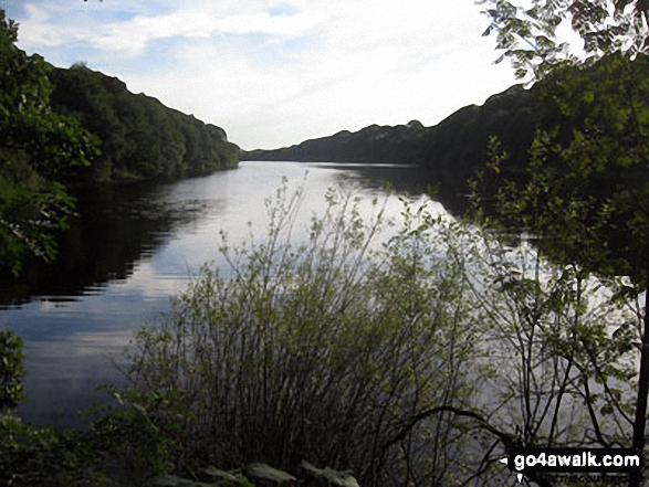 Looking south down Anglezarke Reservoir. Walk route map l176 Great Hill from White Coppice photo