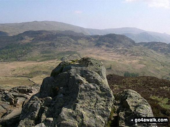 Walk Picture/View: The summit of Grange Fell (Brund Fell) in The Central Fells, The Lake District, Cumbria, England by Donald Lucas (1)