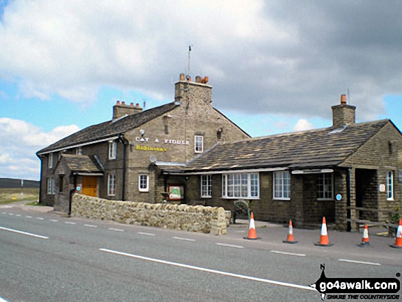 The Cat and Fiddle