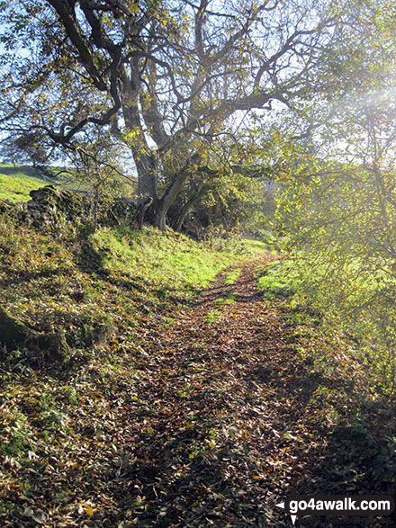 Footpath in Upper Wolfscote Dale