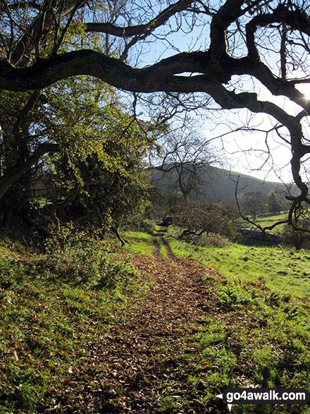 Footpath heading toward Narrowdale