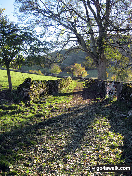 Footpath near Narrowdale How
