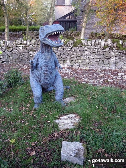 Baby Tyrannosaurus Rex Dinosaur in Alstonefield