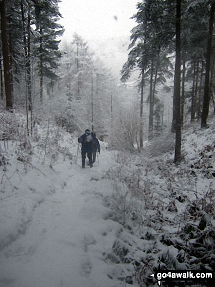 Tramping through the Winhill Pike (Win Hill) woods in heavy snow