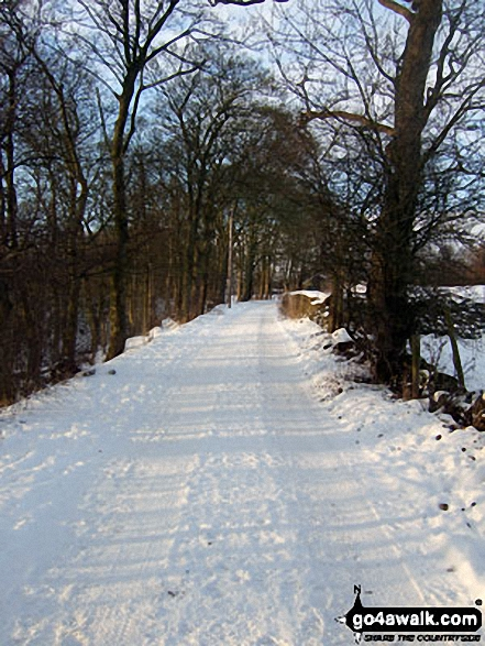 Snowy lane north of Castleon