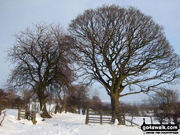 Snowy fields near Spring House Farm between Castleton and Hope