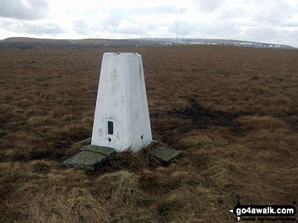 Snailsden summit trig point