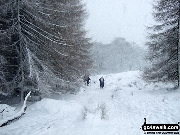 Descending Winhill Pike (Win Hill) towards Yorkshire Bridge in heavy snow