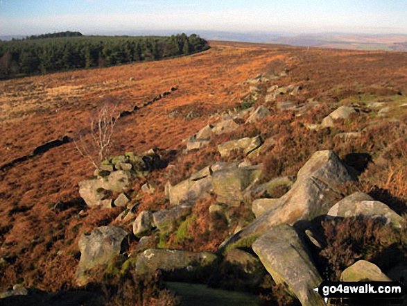 Harland Edge on Beeley Moor