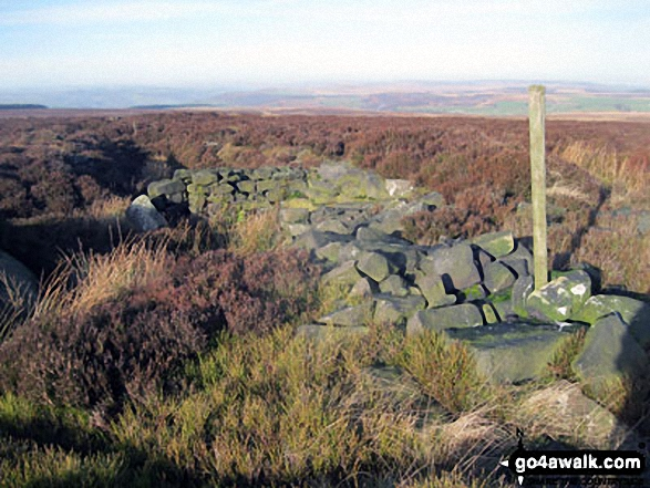 Ruin on Beeley Moor