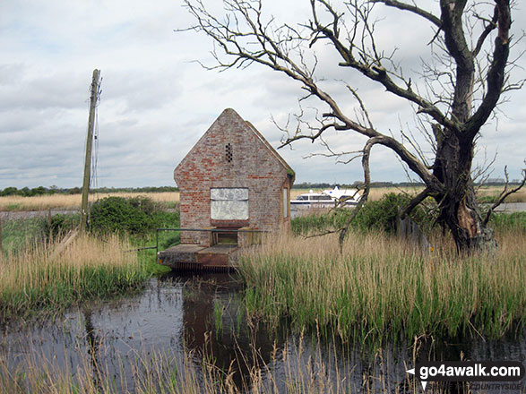 Hut at the path junction on South Walsham Marshes with the River Bure beyond