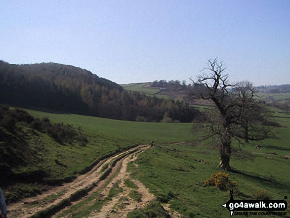 Limestone Way nr Bradford. Walk route map d295 Bradford Dale, Long Dale, Gratton Dale and  Elton from Youlgreave photo