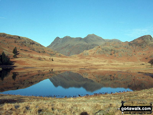 The Langdale Pikes reflected in Blea Tarn on a cold early morning.