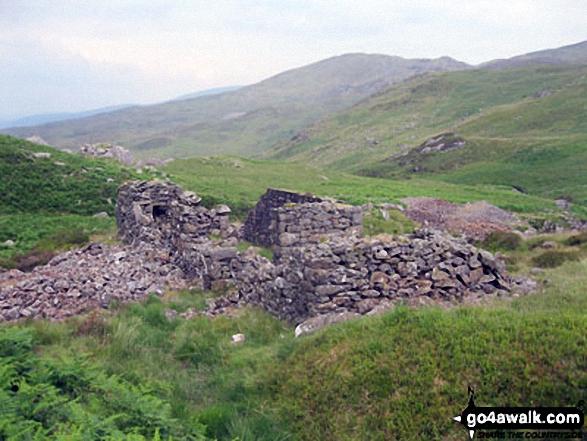 Ruined farmhouse on Moel Fleiddiau