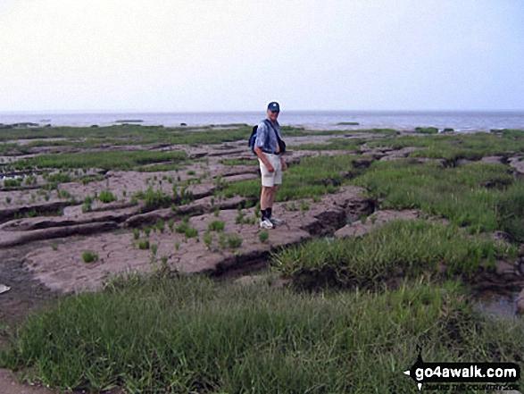 Walk ey119 Spurn Head from Kilnsea - On the Kilnsea clays, Spurn Head