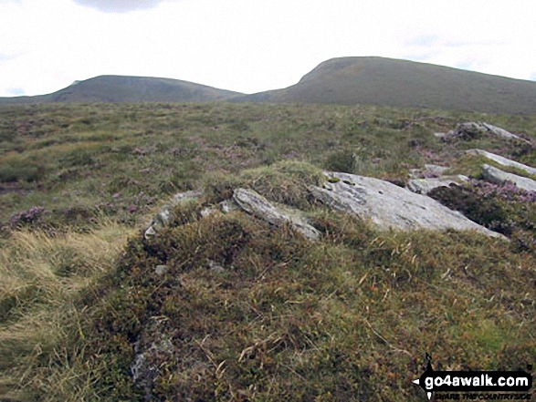 Cadair Berwyn and Cadair Bronwen from Cadair Bronwen (North Top) summit. Walk route map dn127 Pen Bwlch Llandrillo Top and Cadair Bronwen from Llandrillo photo