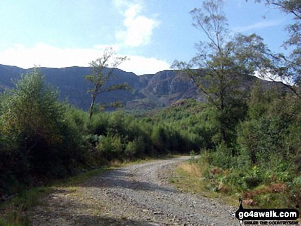 The Y Garn (Rhinogs) ridge from Ffridd Bryn-melyn