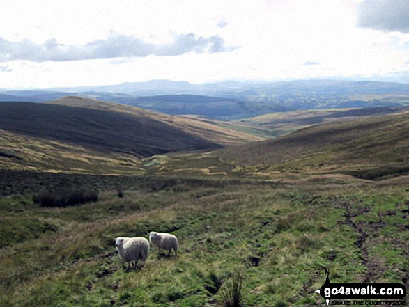 Looking down Clochnant to The River Dee Valley from Bwlch Maen Gwynedd. Walk route map dn127 Pen Bwlch Llandrillo Top and Cadair Bronwen from Llandrillo photo