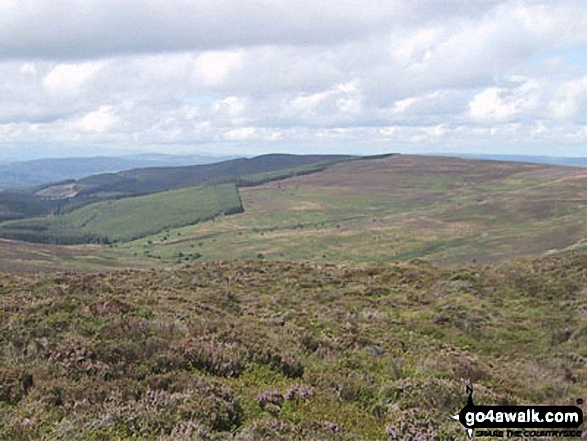 Pen Creigau'r from the summit of Cerrig Coediog