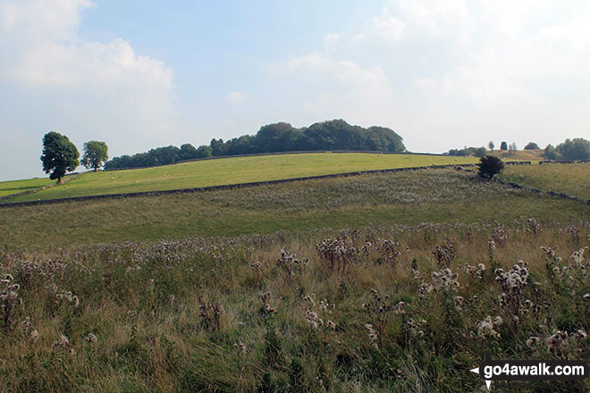 Kenslow Knoll from Ringham Low (Friden)