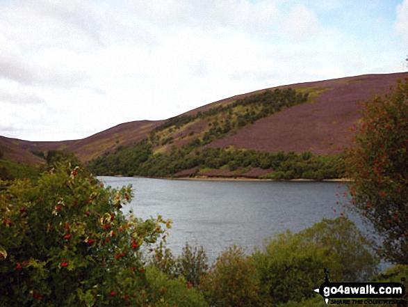 The Lammermuir Hills