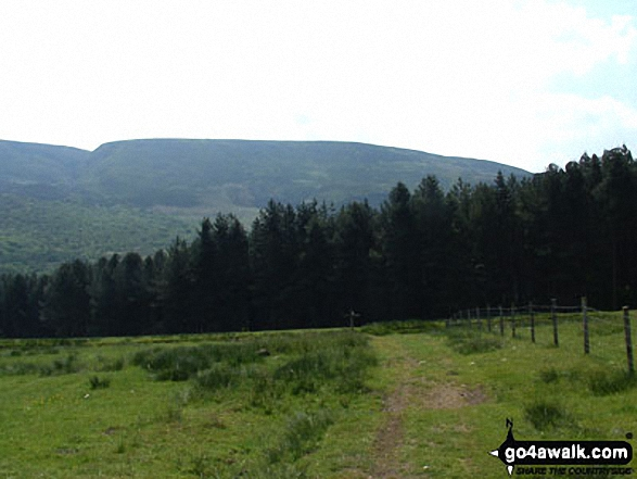 Wildboar Clough with Bleaklow Hill beyond from the Pennine Way near Crowden