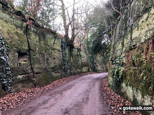 Walking through 'The Trough' between Fox Covert Cemetery and Bellfield Farm