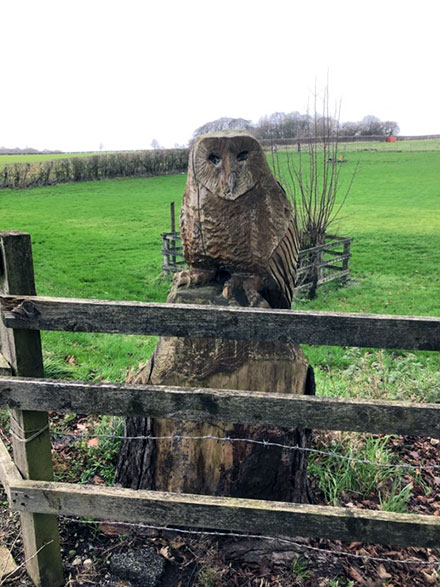 Fine sculptured Owl 250m NW of Blue Coat Farm, Hatton