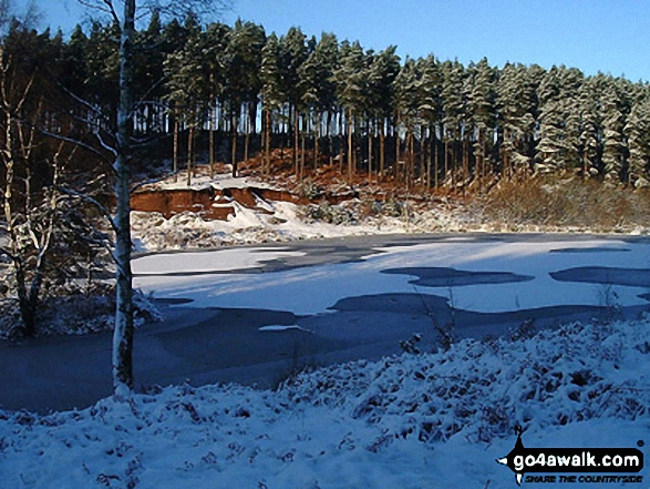 Fairoak Pool in winter, Cannock Chase