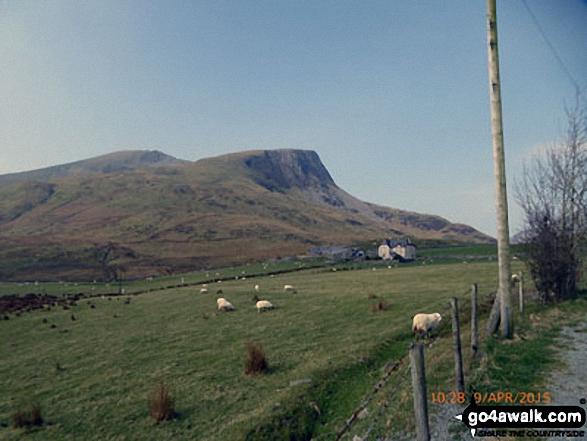 Mynydd Drws-y-coed (left) and Y Garn (Moel Hebog) from the Nantlle Road (B4418) near Rhyd Ddu