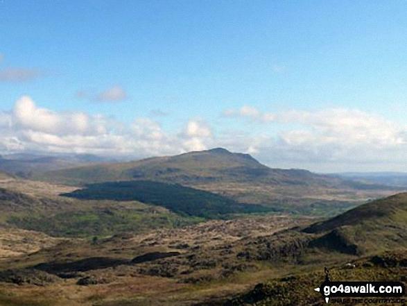 Carnedd Moel Siabod from near Moel Dyrnogydd