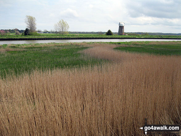 The Yare and Reedham Marshes