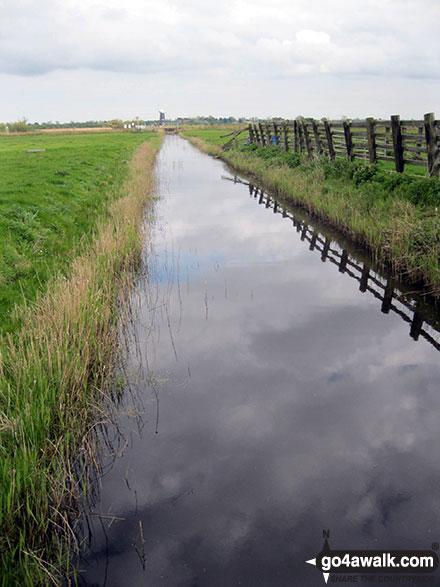 Drainange Channel, Wickhampton Marshes