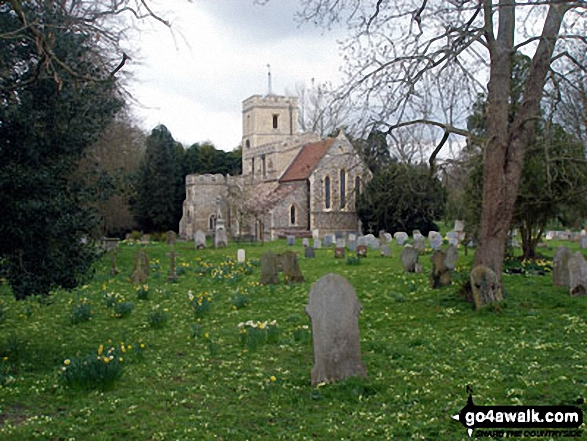 Walk ht101 Wood End and Cromer Windmill from Walkern - Walkern Village Church