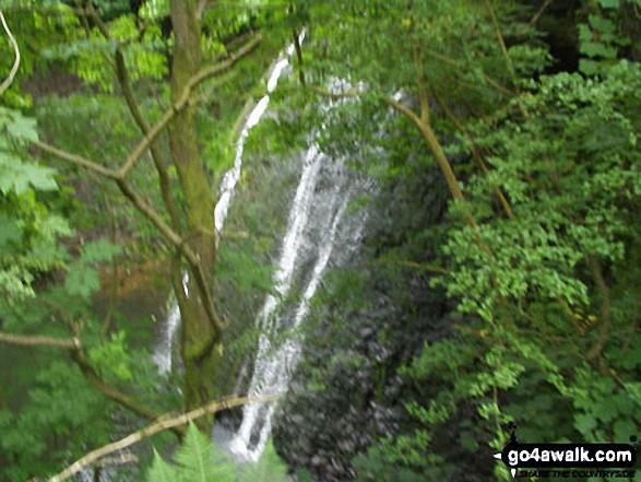 Middle Force, Aysgarth Falls